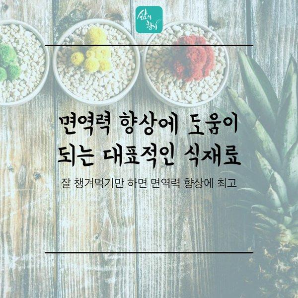 면역력 향상에 도움이 되는 대표적인 식재료